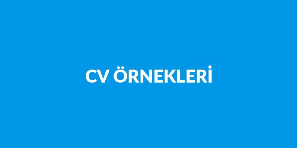 Ücretsiz Hazır CV Örnekleri